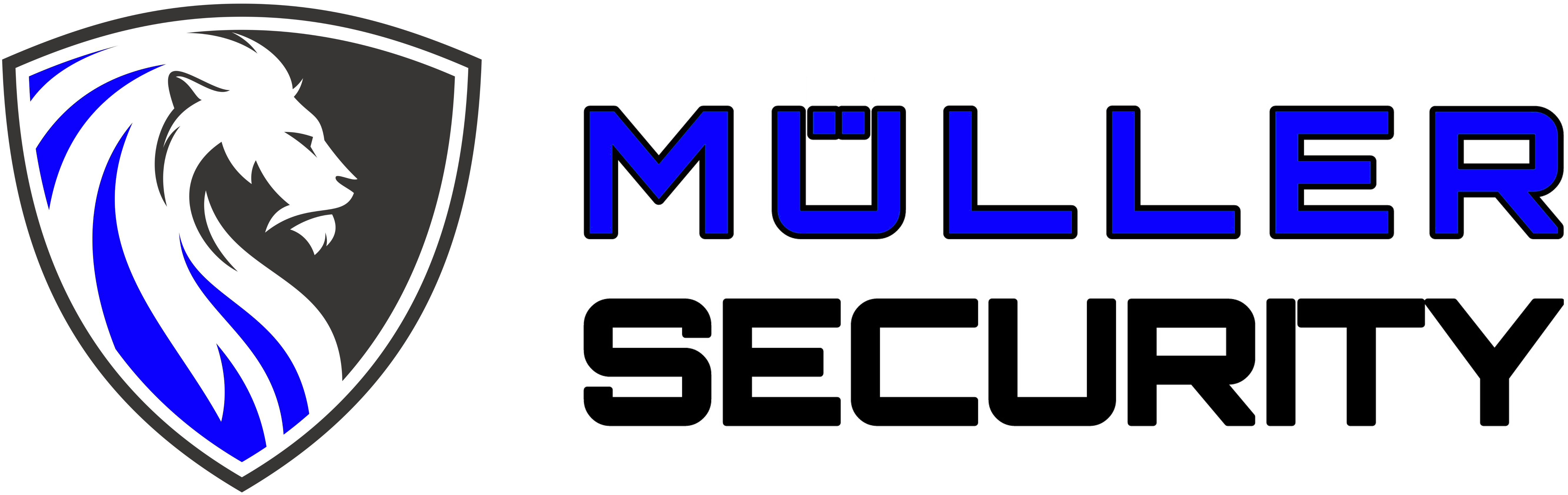 www.mueller-security.ch-Logo